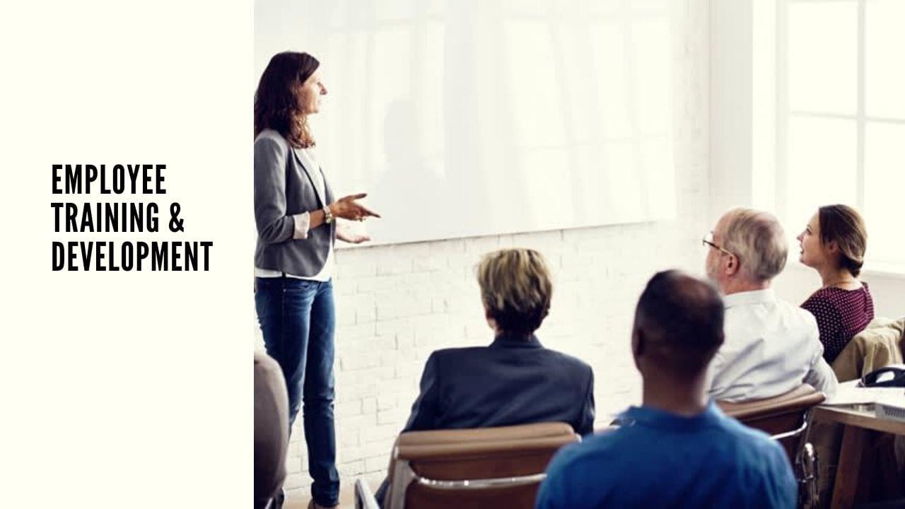 Employee Training and Development Programs